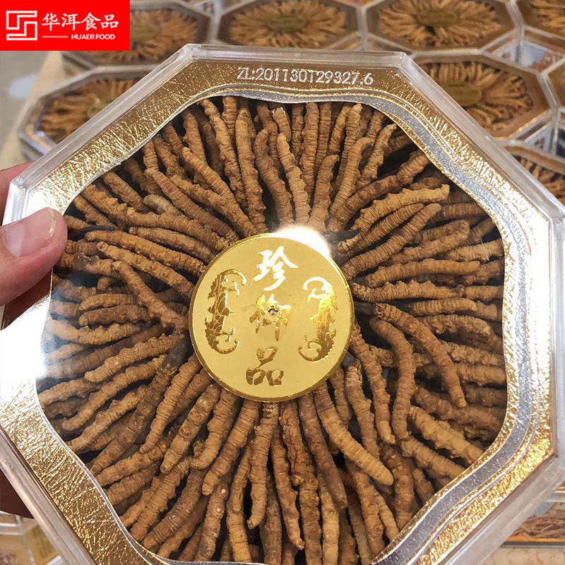 【Cordyceps sinensis】Selected in Tibet, Cordyceps sinensis, complete specifications, no grass, no bamboo sticks