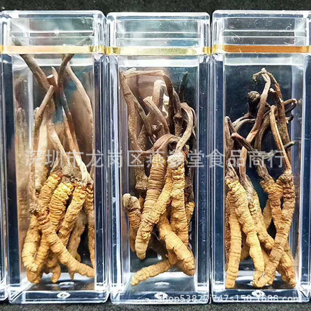 Selected Tibet Nagqu Cordyceps Wholesale 6-7 / g Authentic all dry non-breaking grass 2019 new grass gift box