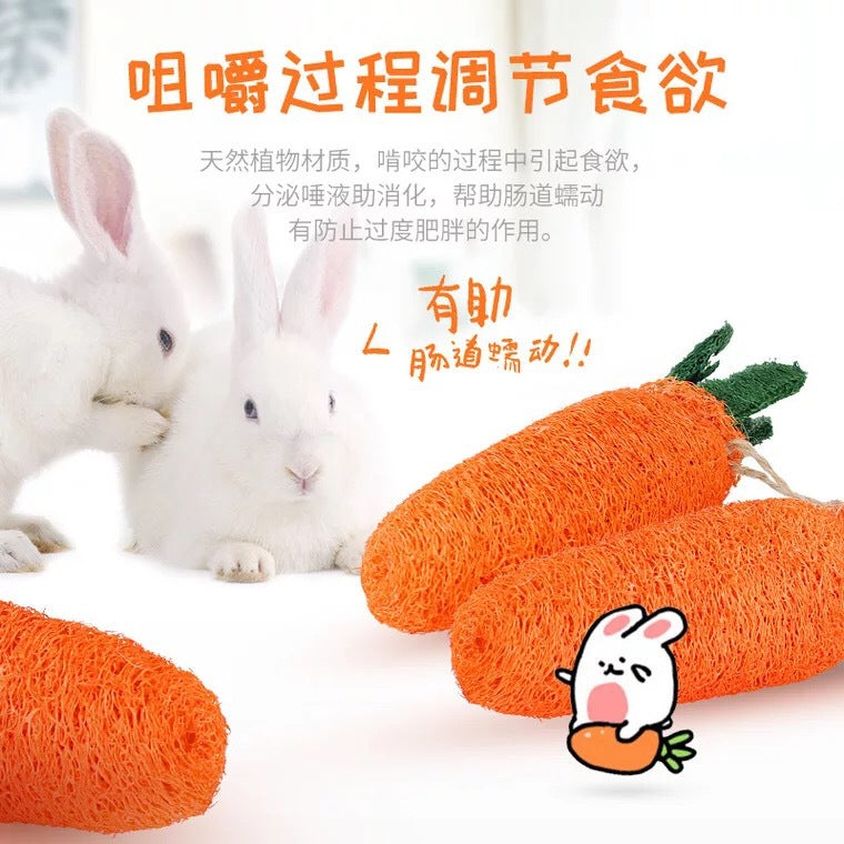 Guinea pigs chinchillas rabbit toy molars pet toys molars teeth radish lop ear rabbit molars pet supplies