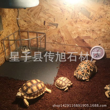 Factory wholesale small pet supplies tortoise grinding stone slab reptile feeding rock plate plate tortoise grinding foot rock plate