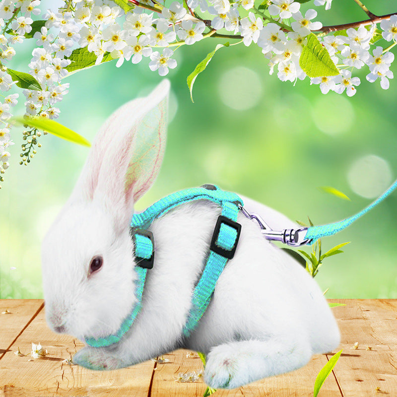 Rabbit traction rope rabbit rabbit rope rabbit supplies chain small pets 遛 兔 rabbit rope telescopic chest back toys wholesale