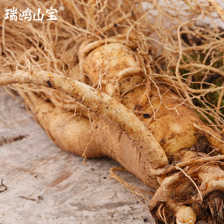 Northeast Changbai Mountain fresh ginseng with soil new ginseng supply stable wholesale