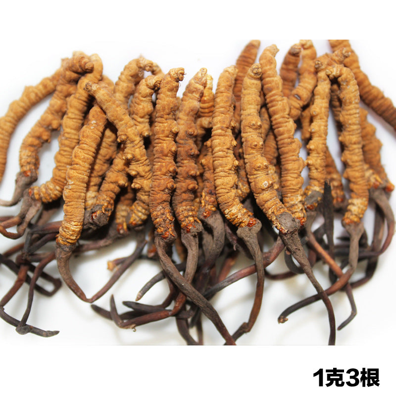 Qinghai Yushu wild Cordyceps sinensis 1 gram 3 selected Qinghai-Tibet high-altitude Cordyceps can be packed
