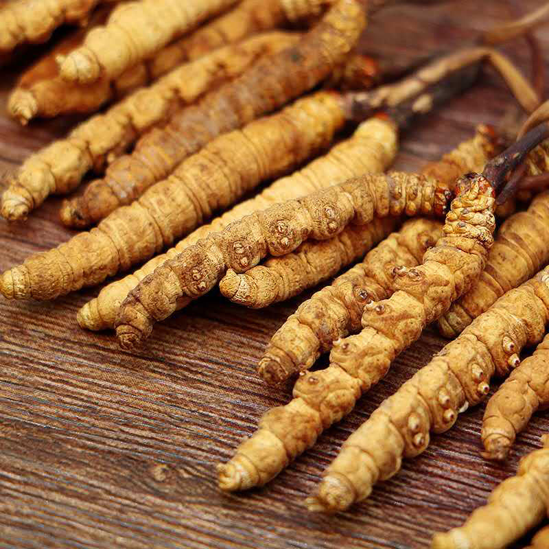 Selected Tibet Cordyceps sinensis, all dry and unbroken grass, gift box, bulk Cordyceps sinensis