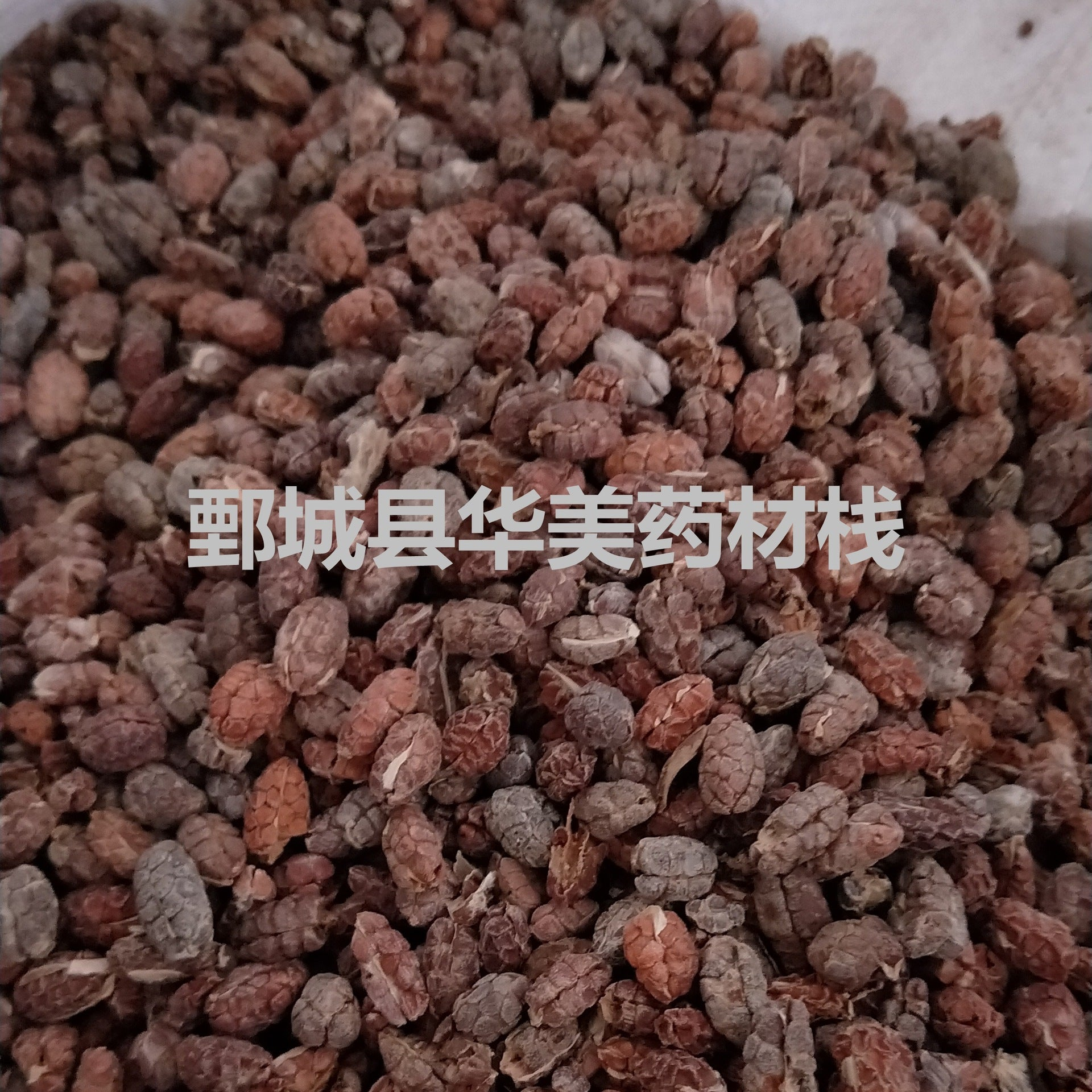Ameno Rice @【Colorful Chinese medicine】Chinese herbal medicine wholesale supply【Amomum】【Net amomum】Amomum