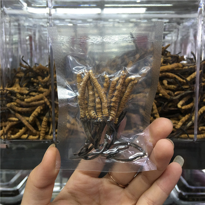 Selected Cordyceps sinensis, a pack of 5/10 cordyceps vacuum bags, no broken grass, no toothpicks can be issued