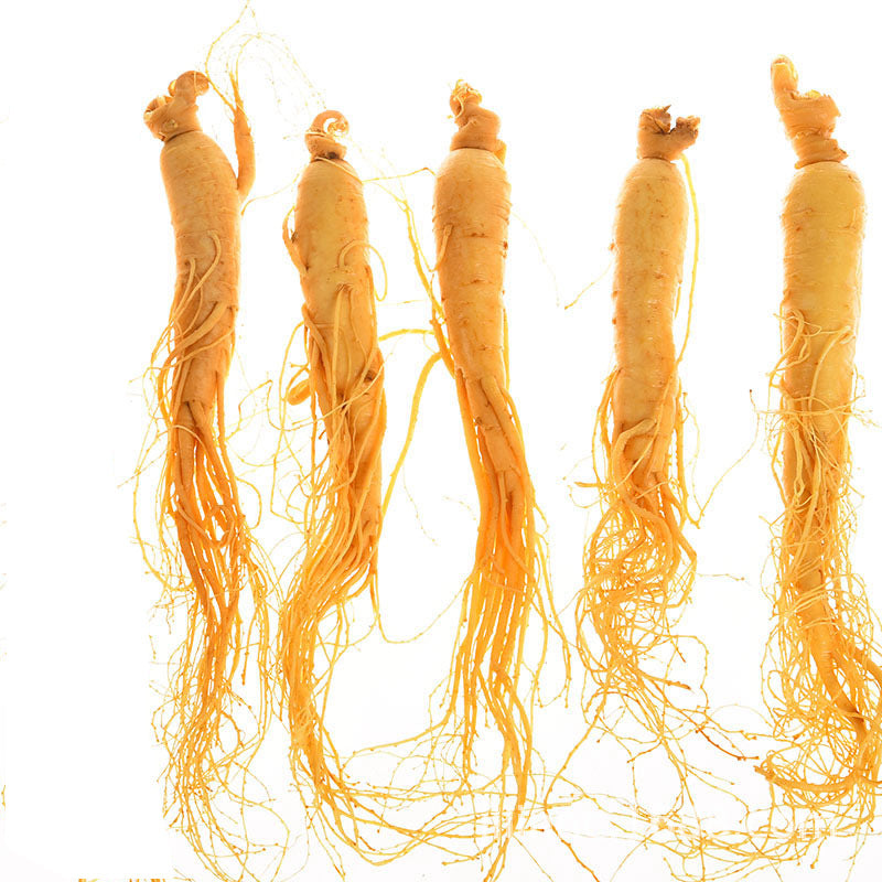 Changbai Mountain Preservation Ginseng Northeast Jilin Fresh Ginseng Run Jianghu Fast Hand Electric Wholesale【One generation】