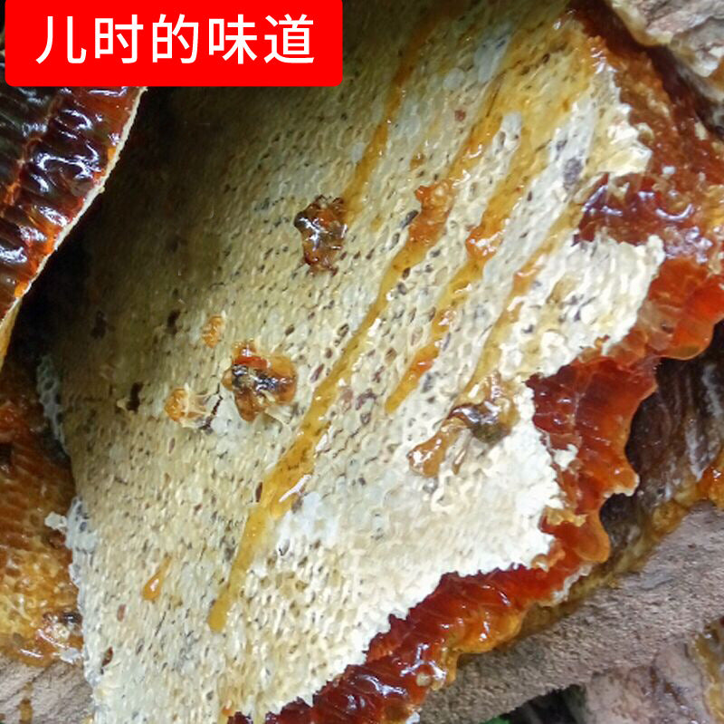 Honeycomb honey Wholesale direct sale Boxed honeycomb honey Beetle honeycomb honey Mountain flower nest honey A generation of honeycomb