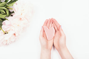 Pink flowers on white background near woman's hand holding pink, heart-shaped gua sha stone.