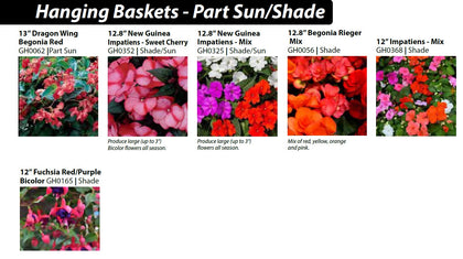 2a - Hanging Baskets - Part Sun/Shade