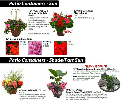 2b - Patio Containers