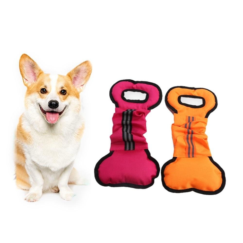 Interactive Dog Pull Toy