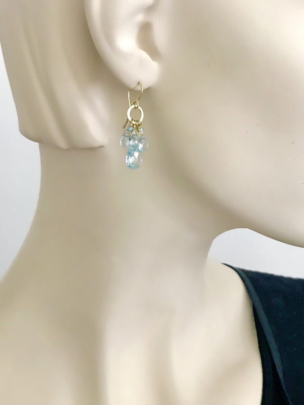 The Circle Charm Drop Earring