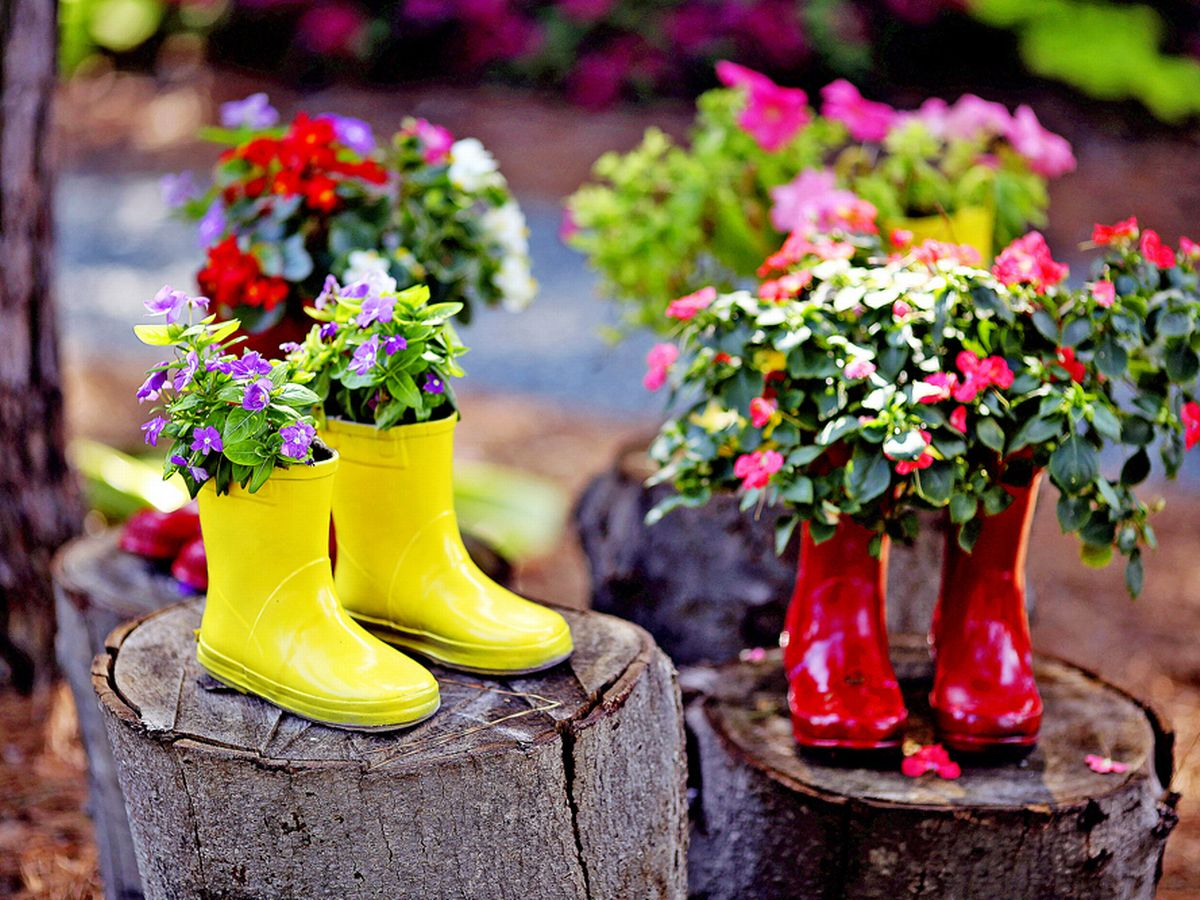 Boots for plant pot | Cans for seedlings | reused planters