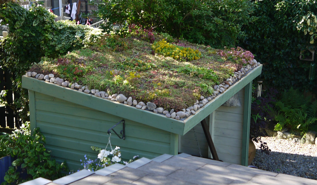 Green Roof | Eco Roofs | Increase Biodiversity with Green Roofs | Plant Covered Roof