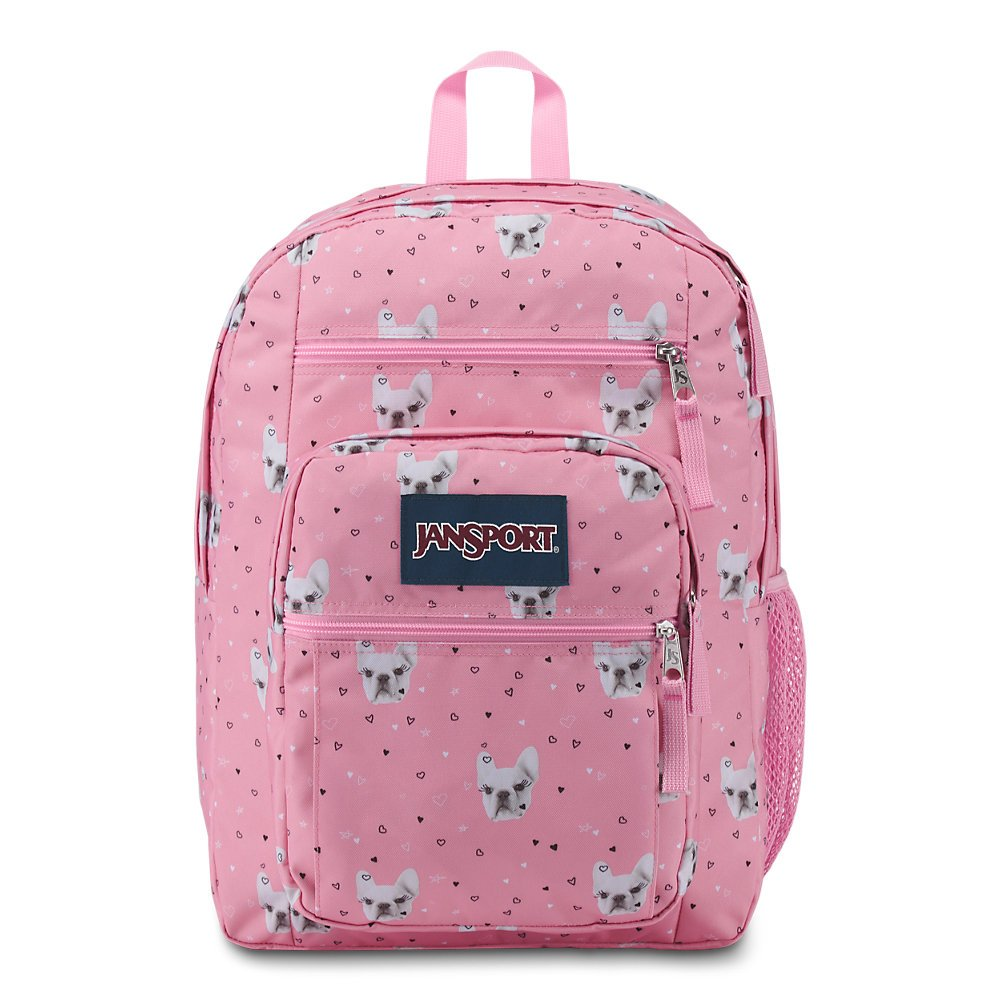 JanSport Big Student Backpack - Fierce Frenchies - Oversized - backpacks4less.com