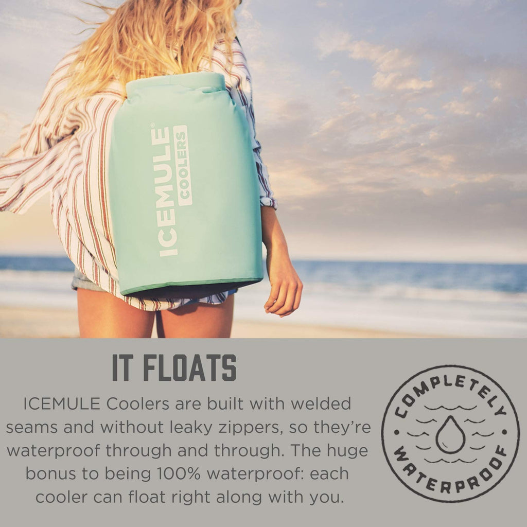 IceMule Classic Insulated Backpack Cooler Bag - Hands-Free, Collapsible, and Waterproof, This Portable Cooler is an Ideal Sling Backpack for Hiking, The Beach, Picnics and Camping-Small, Seafoam - backpacks4less.com