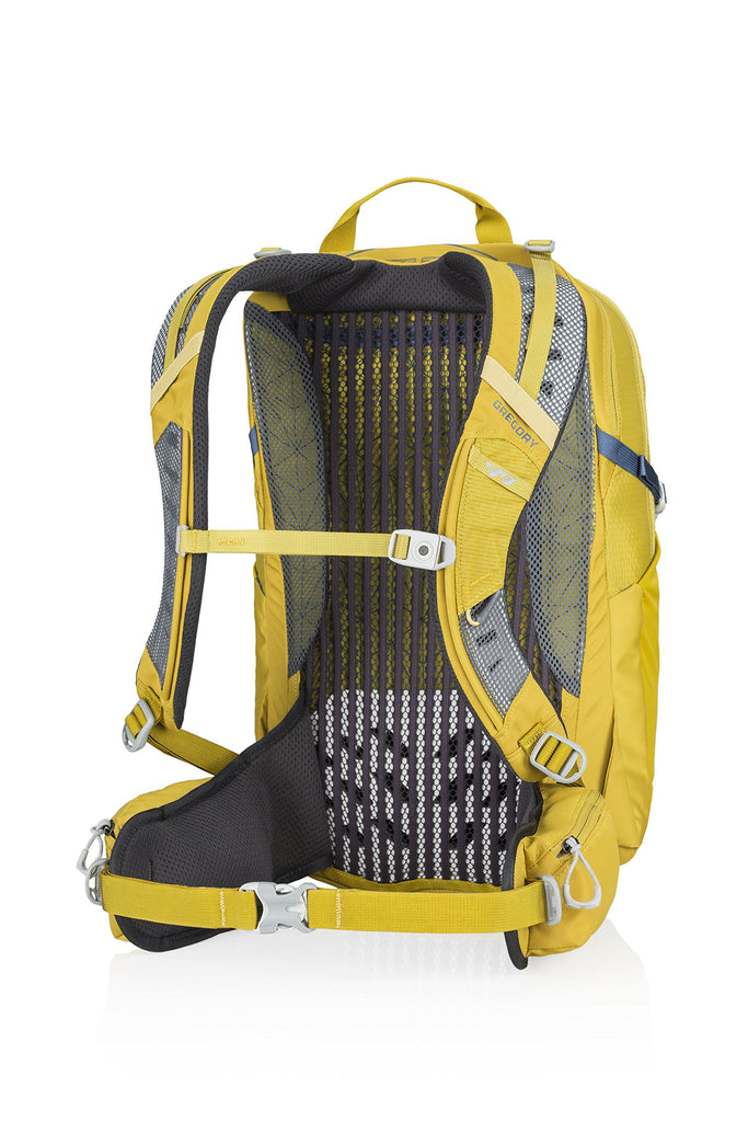 Gregory Mountain Products Citro 20 Liter 3D-Hydro Men's Daypack, Mineral Yellow, One Size - backpacks4less.com