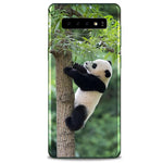 Coque Protection S10