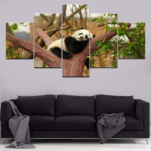 Photos Tableaux Pandas