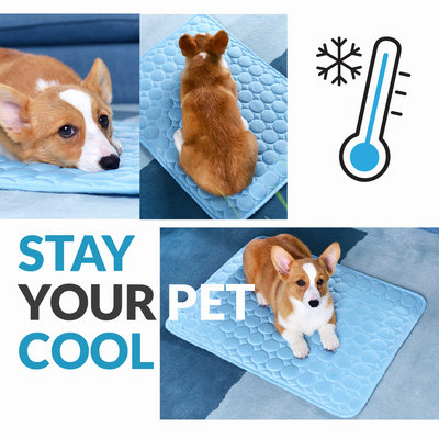 Garish Pigs | 2 Color Breathable Summer Cooling Mat For Dogs And Cats
