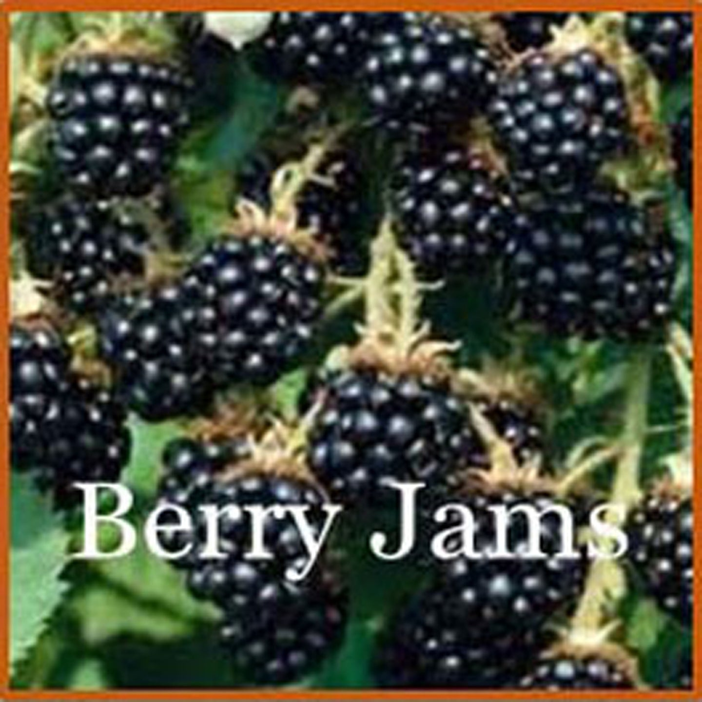 Berry Jam - Ridgedale Orchard & Vineyard