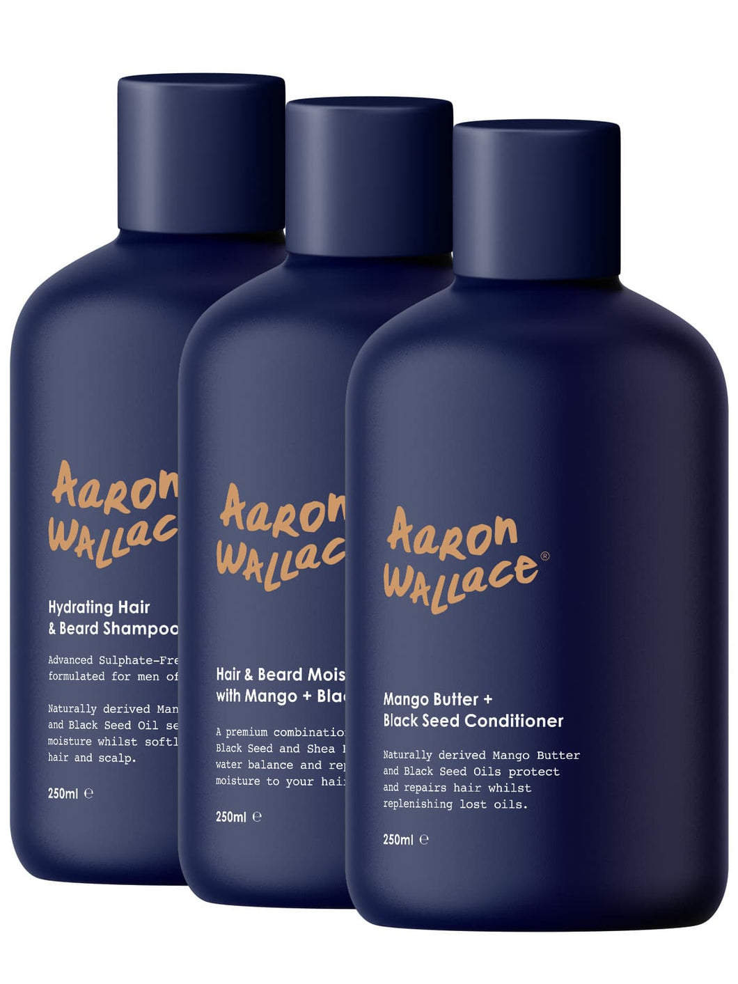 Aaron Wallace 3 step haircare system
