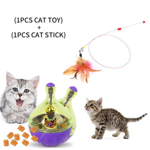 Interactive Cat Toy IQ Treat Ball