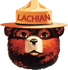 products/LachianBear.png