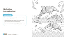Load image into Gallery viewer, Animals of Arabia - COLORING BOOK