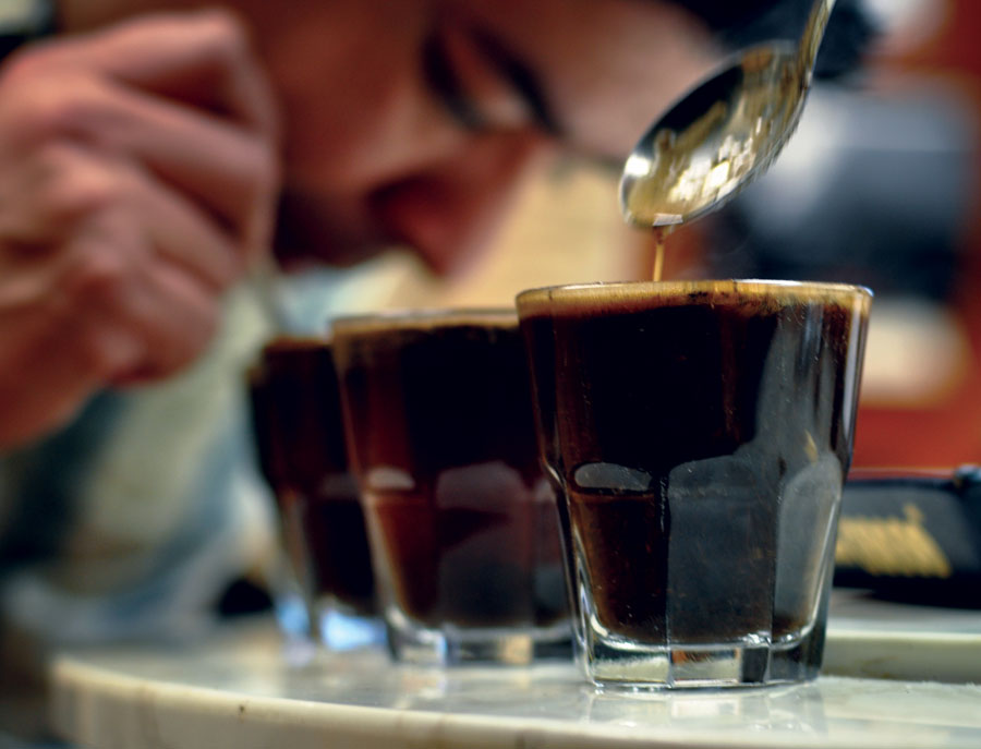 Coffee Experts Sampling (cupping) Coffee for quality