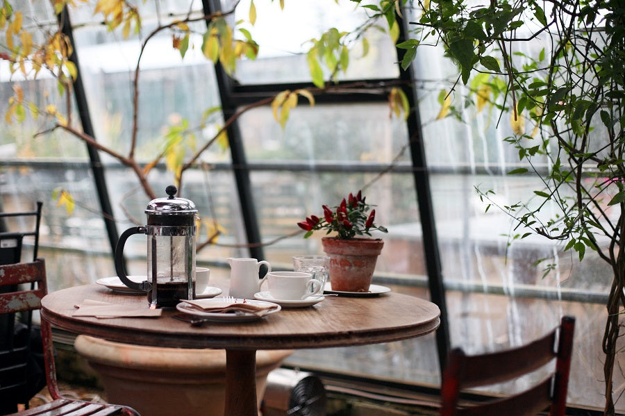 A cafe a table with a French Press and greenary