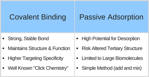 Advantage of Covalent Conjugation for Gold Nanoparticles vs. passive adsorption