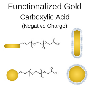 Carboxylic Acid Functionalized Gold Nanorods and Nanospheres