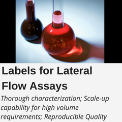 Lateral Flow Assay Labels