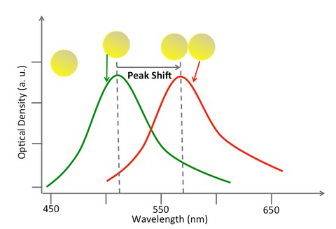 Aborbance spectrum - Plasmon coupling vs. single gold nanoparticle