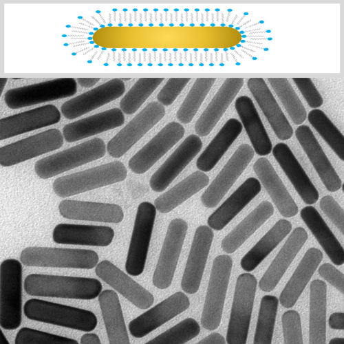 CTAB Stabilized Gold NanoRods