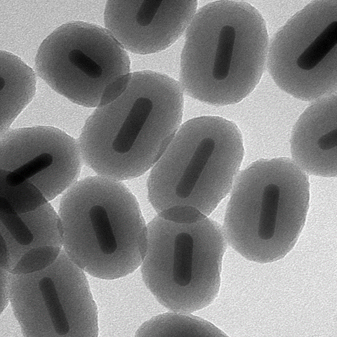 Silica-Coated Gold NanoRods