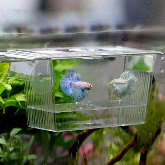 Acrylic Fish Tank Breeding Isolation Box Aquarium Hatchery Incubator Holder Transparent Box Holder Aquarium Accessories