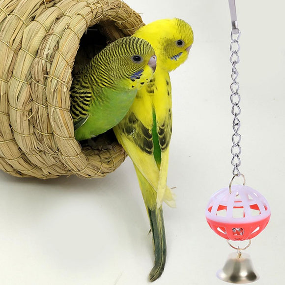 Bird Chewing Toys  2 Colored Ball Parrot Parakeet Bite Climbing Play Hanging Toy Pet Cage  A Bell At The Bottom zh1