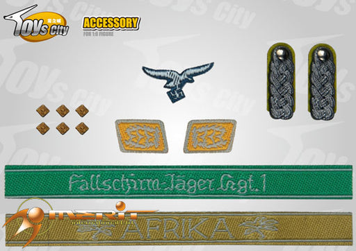 1/6 WWII GERMAN ARYM INSIGNIAS SET 16