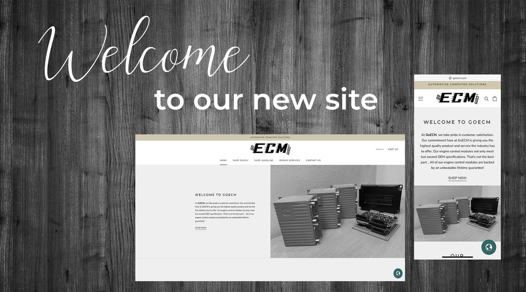 Welcome to GoECM!