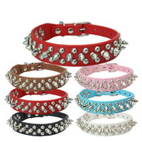 Specialty spiked riveted leather collar