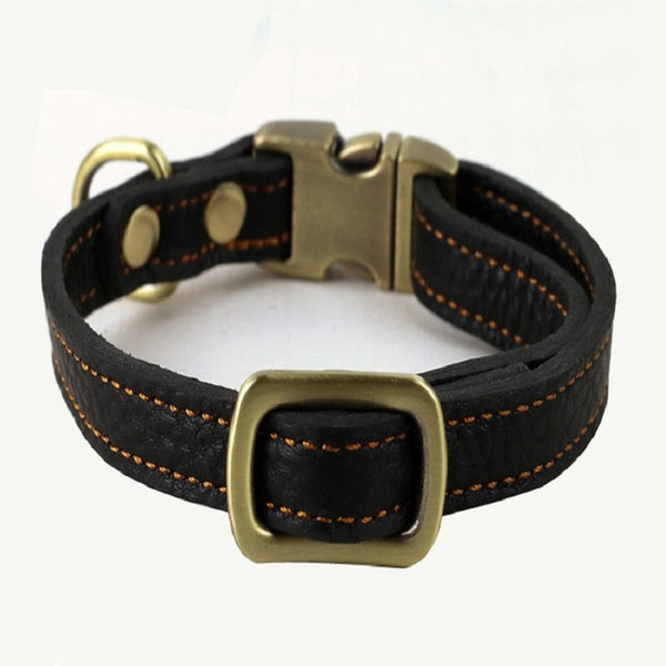 The Old Timer Classic Genuine Leather Collar