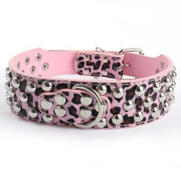 Specialty Bully studded collar