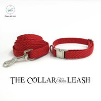 Red Collar and Lead