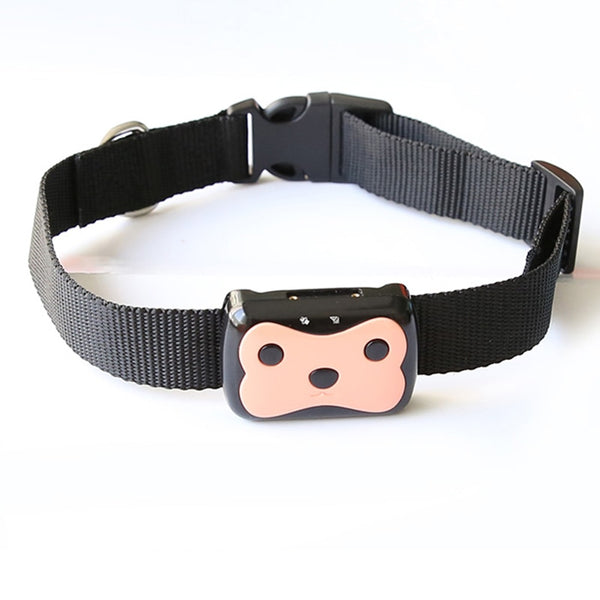 Coral Smart Waterproof GPS training tracking Collar