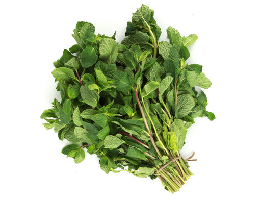 Mint Leaves 1 Bunch