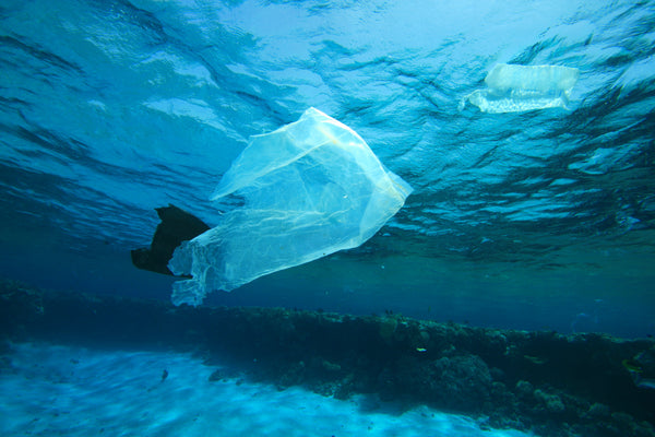 Portugal has joined the Plastic Pact Network