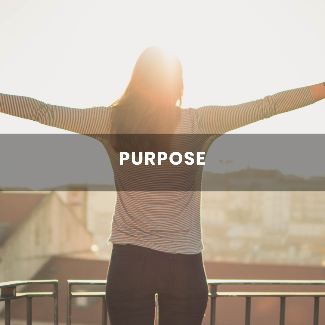 Purpose Package